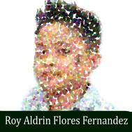 Roy Aldrin Flores Fernandez 2018